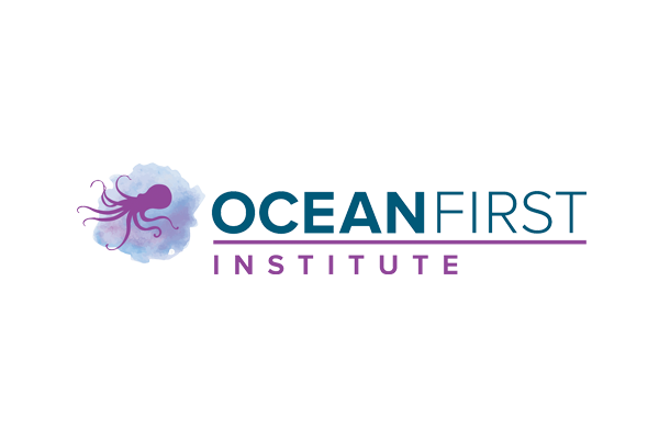ocean, education, children, conservation, connectOcean, classrooms, experience